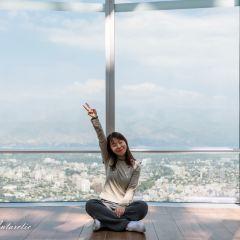 Sky Costanera User Photo