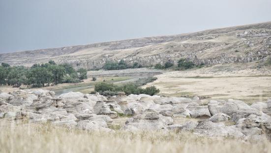 艾伯塔省立石刻公園