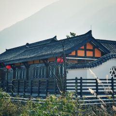 Hongjun Qiangdu Wujiang Zhihuibu Jiuzhi User Photo