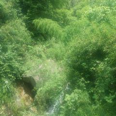 옥화봉 여행 사진