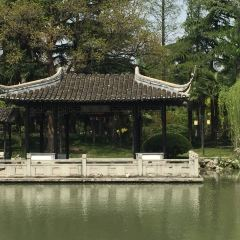 Qing Yan Park User Photo