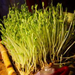Lao Biao Ji(Guilindian) User Photo