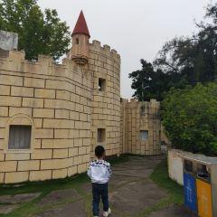 Xingdong Park (North Gate) User Photo