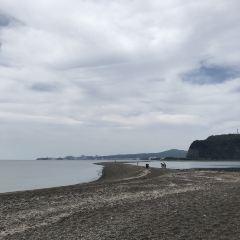 知林島用戶圖片
