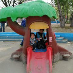 Luozhuang Shengneng Amusement Park User Photo