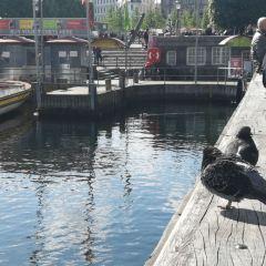 Nyhavn User Photo