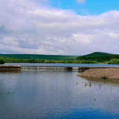 林海觀音山用戶圖片
