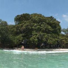 Ku Dee島張用戶圖片