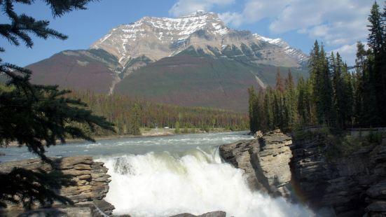 阿薩巴斯卡瀑布(Athabasca Full)是班夫,賈斯伯