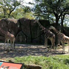 Philadelphia Zoo User Photo