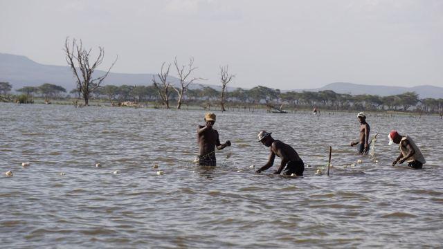 Lake Naivasha