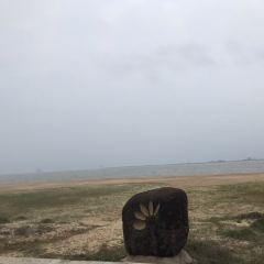 西海岸帯状公園(ハイコウ ウェストコーストパーク)のユーザー投稿写真