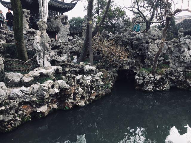 Lion Forest Garden