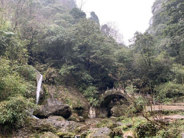 Qingcheng Houshan
