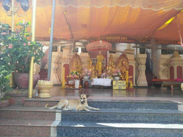 Wat Moha Montrei