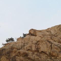 孔望山摩崖石刻用戶圖片