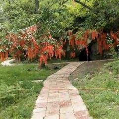 藏王避雨石用戶圖片