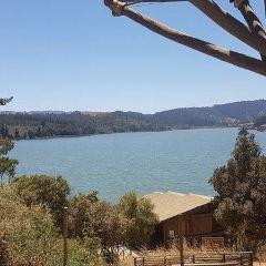 Reserva Nacional Laguna Torca User Photo