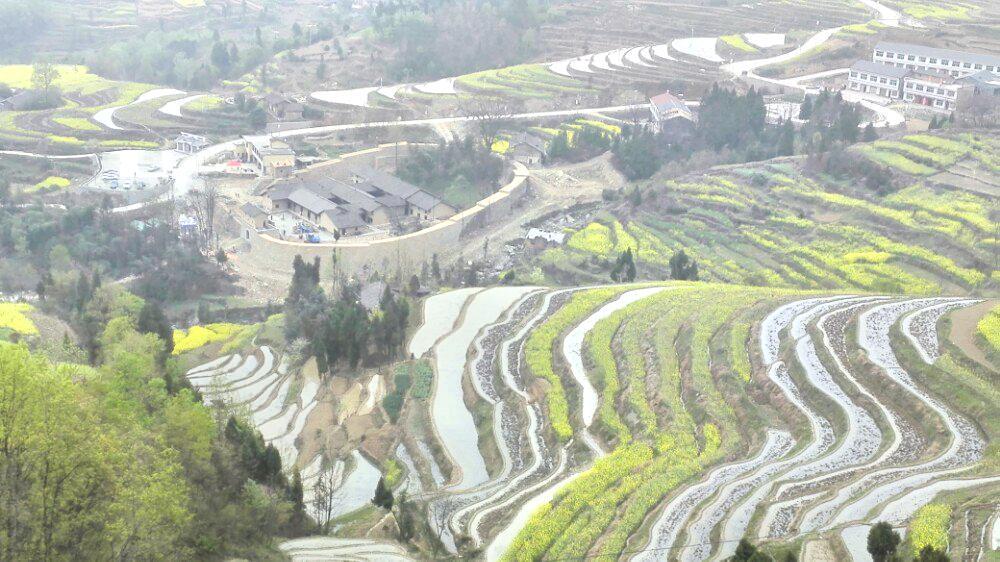 Fengyan Ancient Terraces