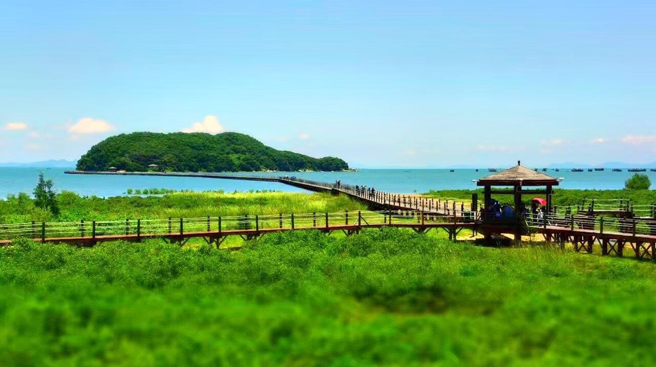 Hailing Island National Wetland Park of Mangrove Forest