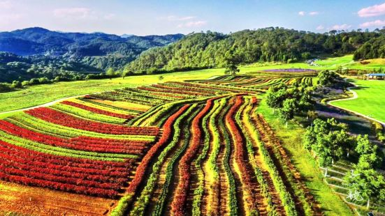 騰衝原鄉棲花嶺景區