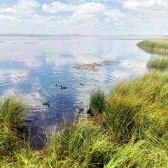 骨麻湖用戶圖片
