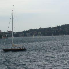 Pyrmont Bay User Photo
