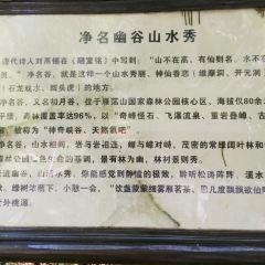 링펑징취 여행 사진