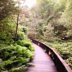 제이드가든수목원 여행 사진