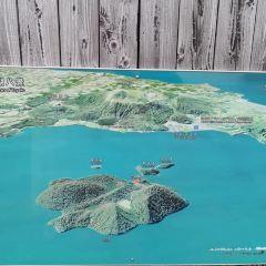 洞爺湖遊覽船用戶圖片