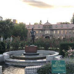 大通公園用戶圖片