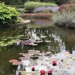 Royal Botanical Garden(Canada) User Photo