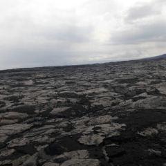 ISLAND LAVA JAVA(Kona) User Photo