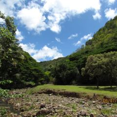 Waimea Valley User Photo