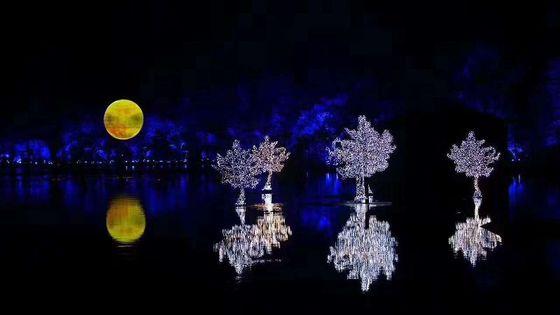 Impression West Lake Show (Enduring Memories of Hangzhou) Ticket