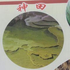 Yunxia Cave Scenic Area User Photo