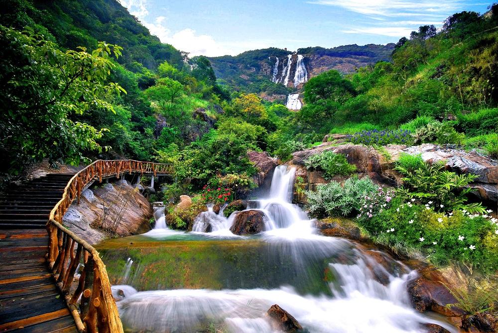 白水寨風景名勝區森林氧吧一日遊