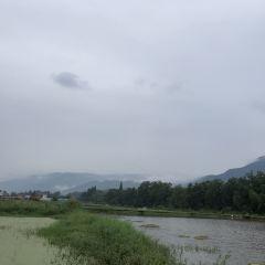 아미산 성지 연꽃 생태계곡 여행 사진