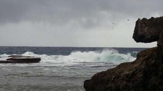 这里就是诗和远方。篮篮的天篮篮的海,鲜花、沙滩、白浪、奇石;