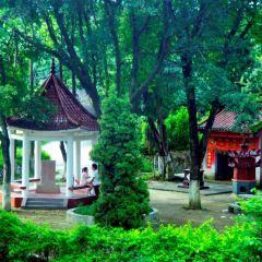 Ziyun Botanical Garden User Photo