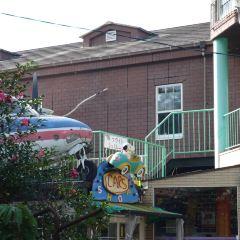 九州自動車歷史館用戶圖片