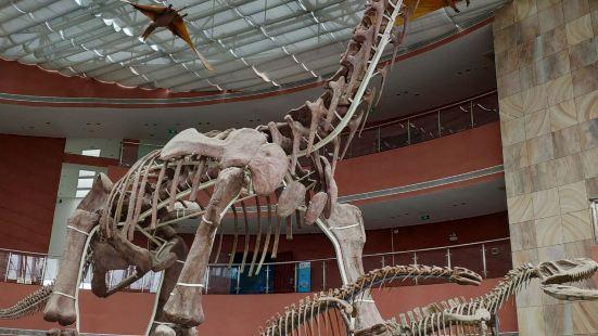门票30块,去过自贡恐龙博物馆的,可以比较一下,这里比较小,