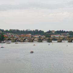Alte Donau User Photo
