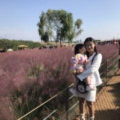 Haneul Park User Photo