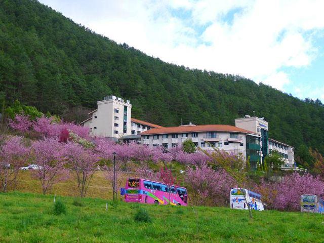 우링 농장