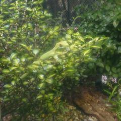 彩虹泉自然公園用戶圖片