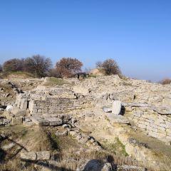 Hattusas User Photo