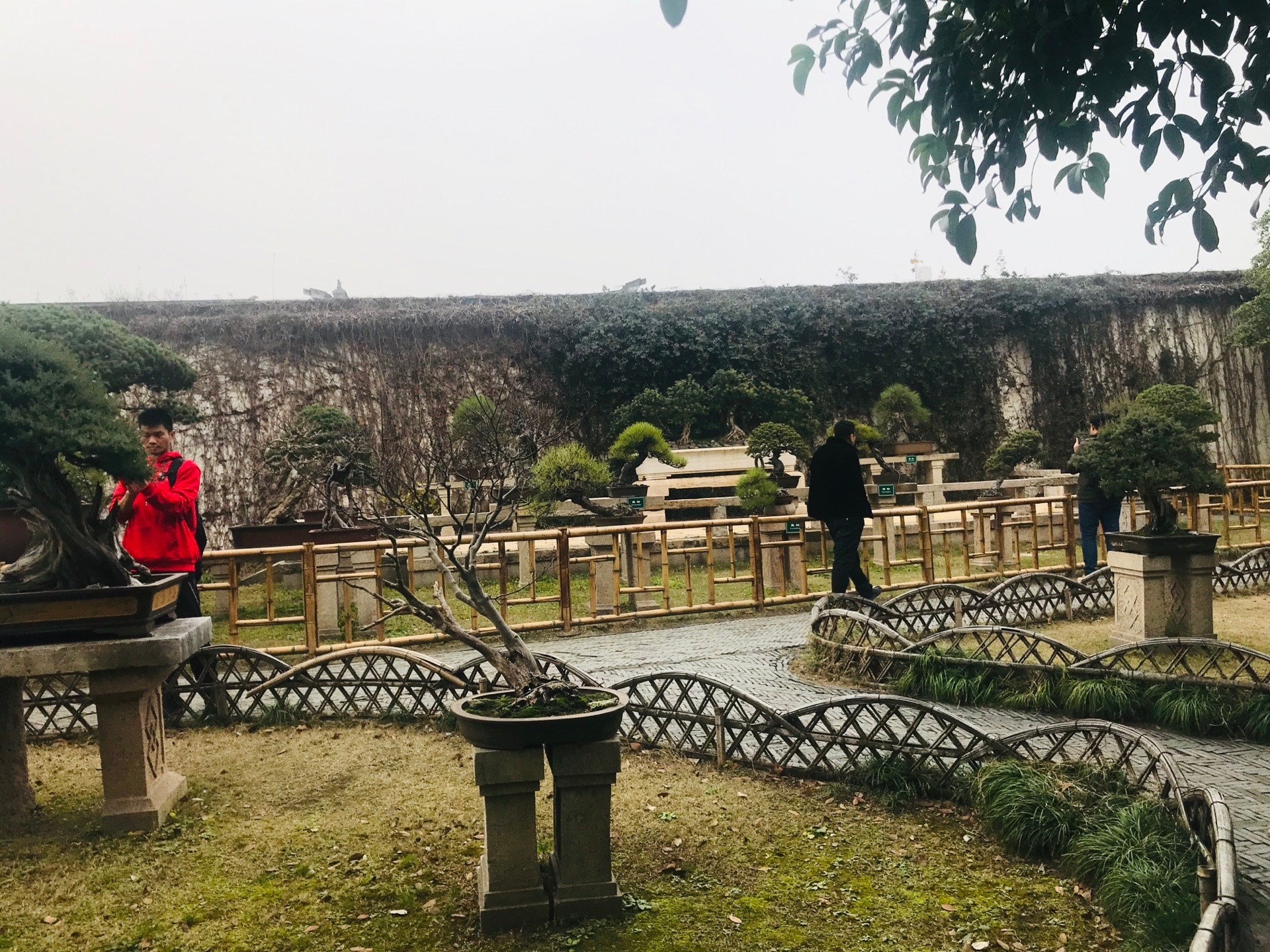 Humble Administrator S Garden Travel Guidebook Must Visit Attractions In Suzhou Humble Administrator S Garden Nearby Recommendation Trip Com