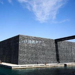 歐洲及地中海文明博物館用戶圖片