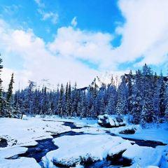 Yoho National Park User Photo